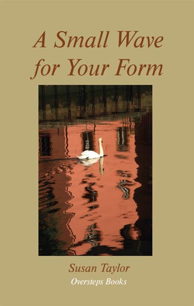 'A Small Wave for Your Form': cover
