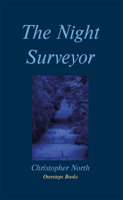 'The Night Surveyor': cover